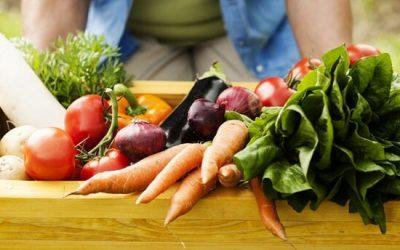 agriculture_biologique_nourrir_humanite-e1474957976933